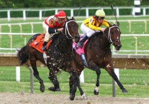 Horse racing at Arlington Park 2007